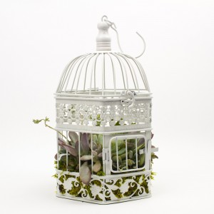 The Birdcage Hanging Succulents Planter from Juicykits.com