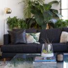 The Arrowhead air plant terrarium table centerpiece