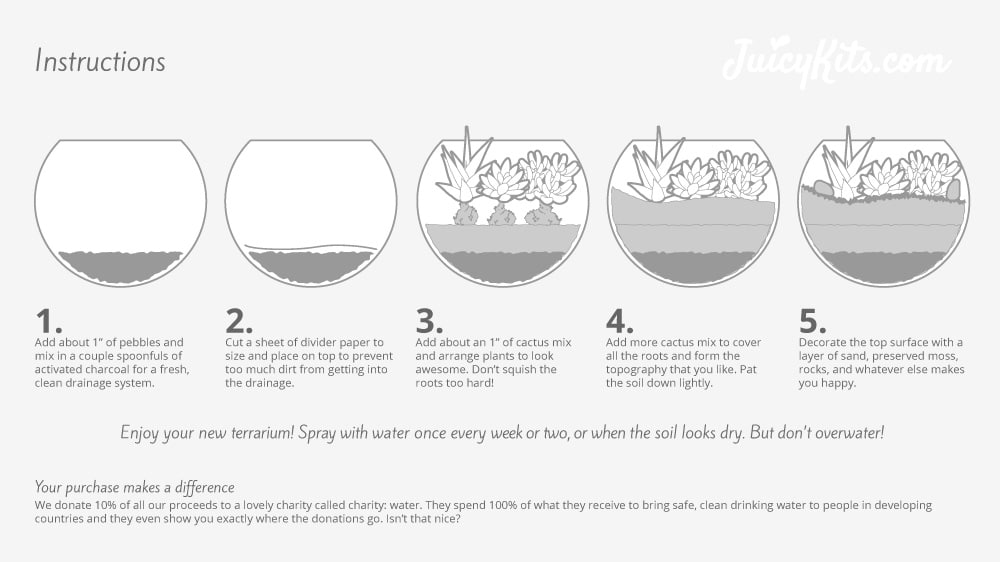 How to Assemble a Juicykits.com Succulent Terrarium Kit