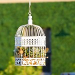 The Birdcage Hanging Planter for Succulents