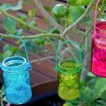 Moonshots DIY Hanging Terrakium Kit for air plants.