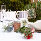 Juicy Froots mini gift air plant terrariums on event table