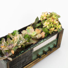 The Broadcaster recycled vintage antique radio succulents planter DIY kit