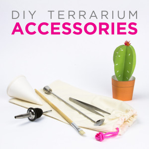 View All Juicykits Accessories for DIY Terrariums