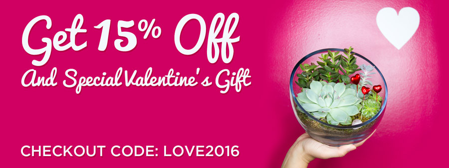 Juicykits Valentine's Day Sale and Free Gift