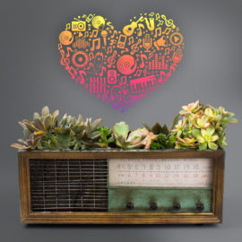 Juicykits Music for Succulents